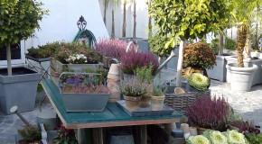 Garden paradise at Florvalentin