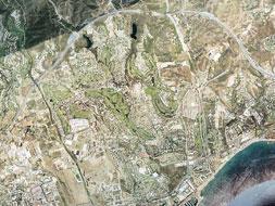 Marbella park