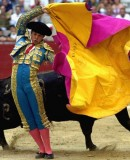 Lawmakers ban bullfighting