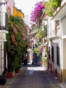 Spring in Marbella