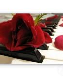 """Vivo Per Lei""- Andrea Bocelli & Vera Weiss on St Valentines Day"
