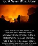 Fire Aid Concert – Concierto Victimas Del Incendio