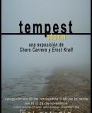 """""""Tempest"""" Storm"""