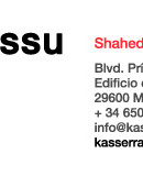 Painting Exhibition at  Kasser Rassu Gallery-Showroom by Spartak Sharipo !