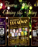 New For 2014 – Special Theatre Nights Marbella – Coming This Spring