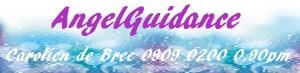 banner-site-carolien-300x73