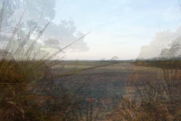 frans verschoor - 7, horizon still